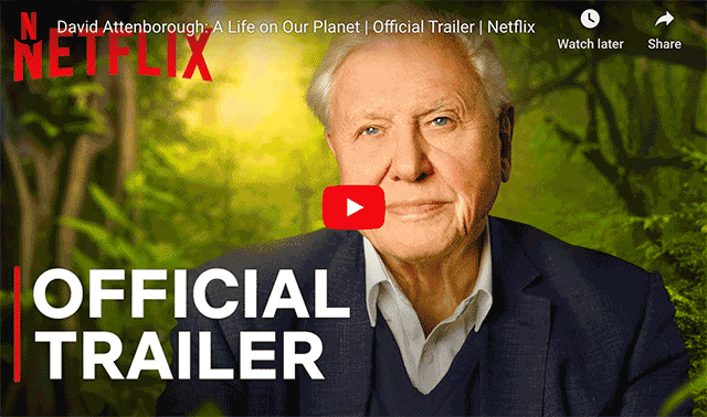 attenborough-trailer